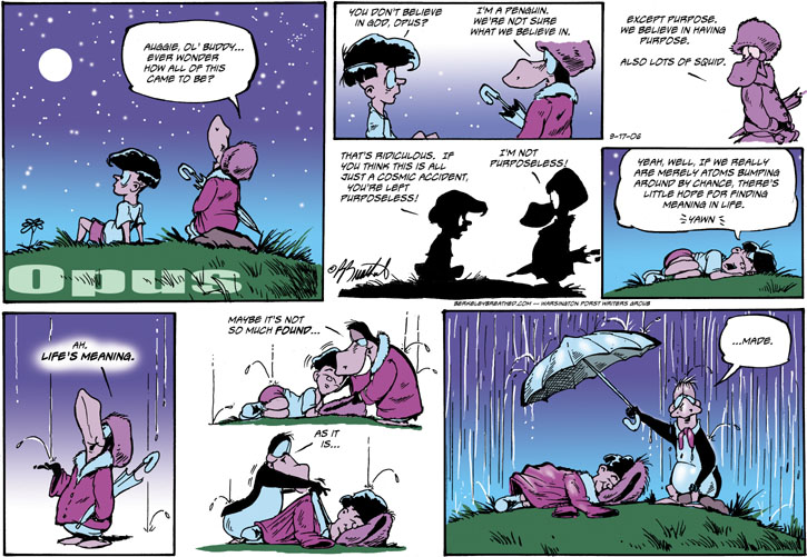 Meaning of Life Opus Comic Strip
